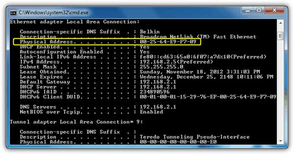 IPconfig Физический адрес