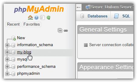 выберите базу данных WordPress в phpmyadmin