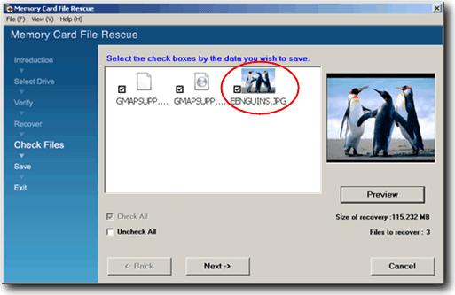Скачать файл карты памяти Sony Rescue
